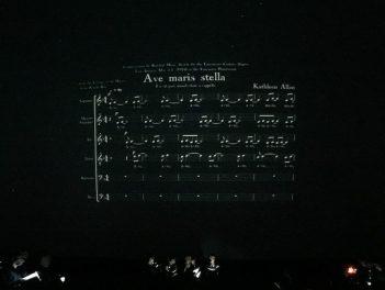 lux-antiqua-20