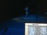 Mark with Array live